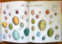 an egg is quiet spread.jpg