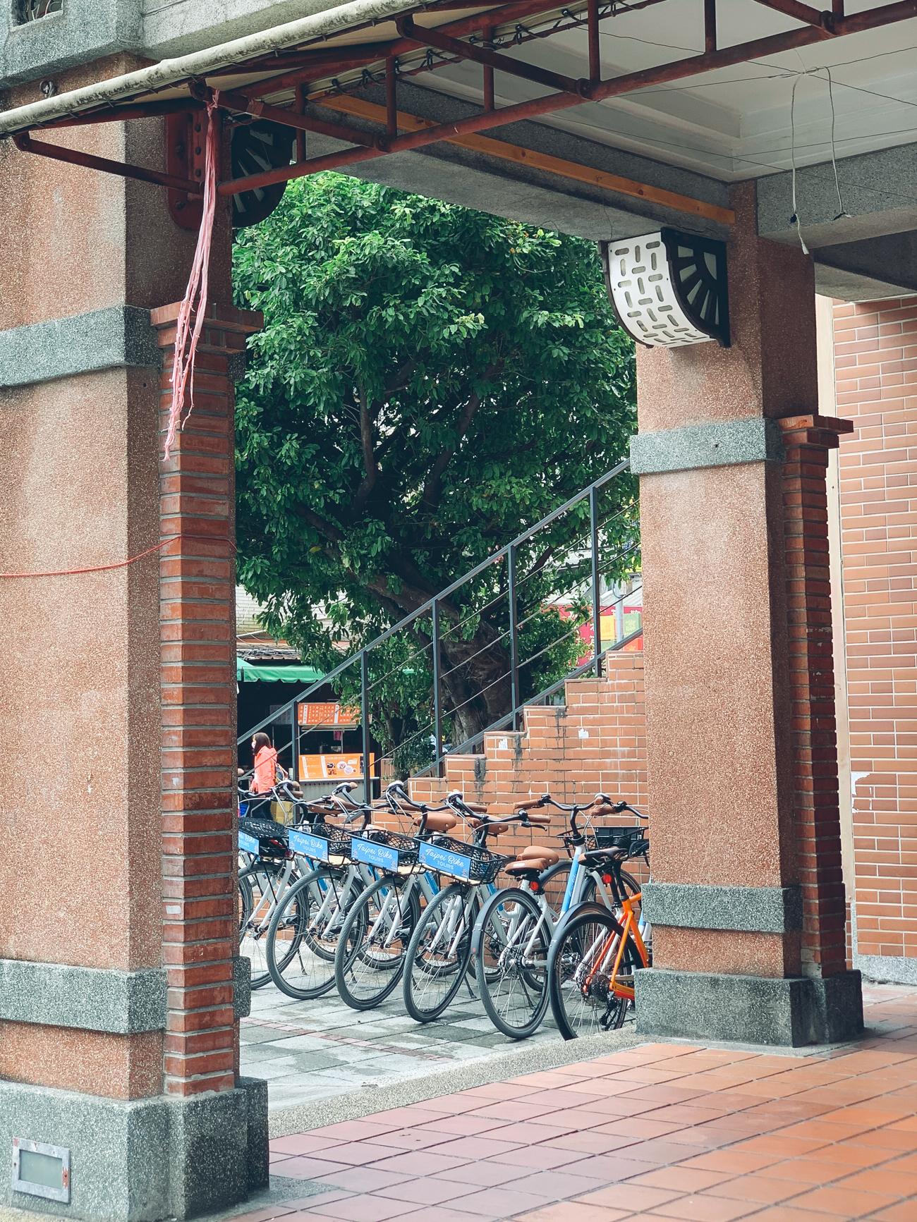 bikeslineup1