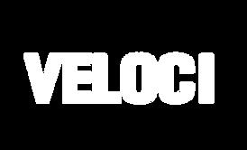 veloci logo.png