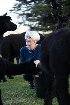 Alison Brolsma with black Alpacas on Alpaca Stud