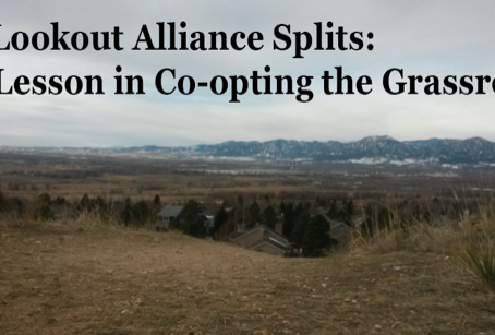 The Lookout Alliance Splits: A Lesson in Co-opting the Grassroots