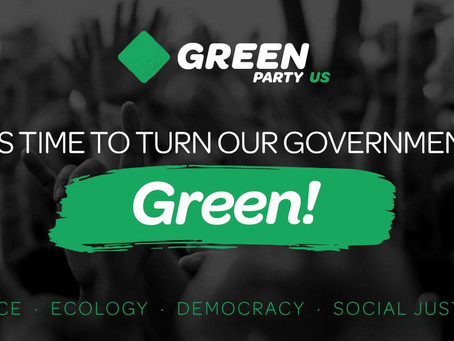 Green Party's Livestream Interview with Merrily Mazza