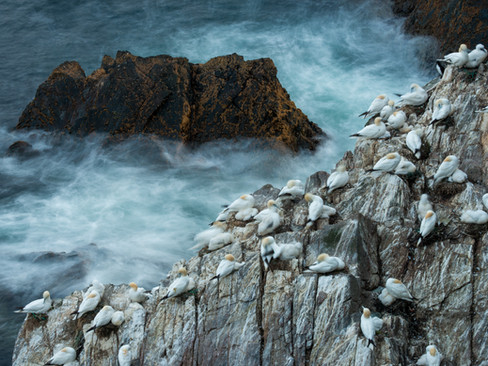 Slow Shutter Sea By Josh Jaggard