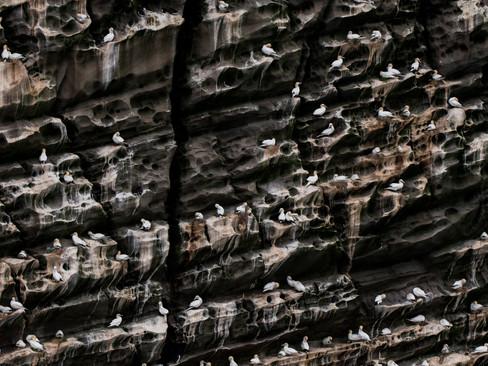 Stunning cliff face By Josh Jaggard