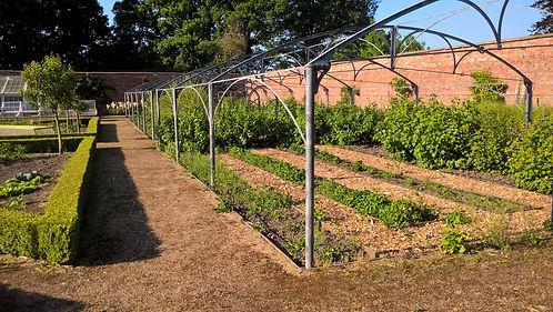 Poole hall fruit cage 17.jpg