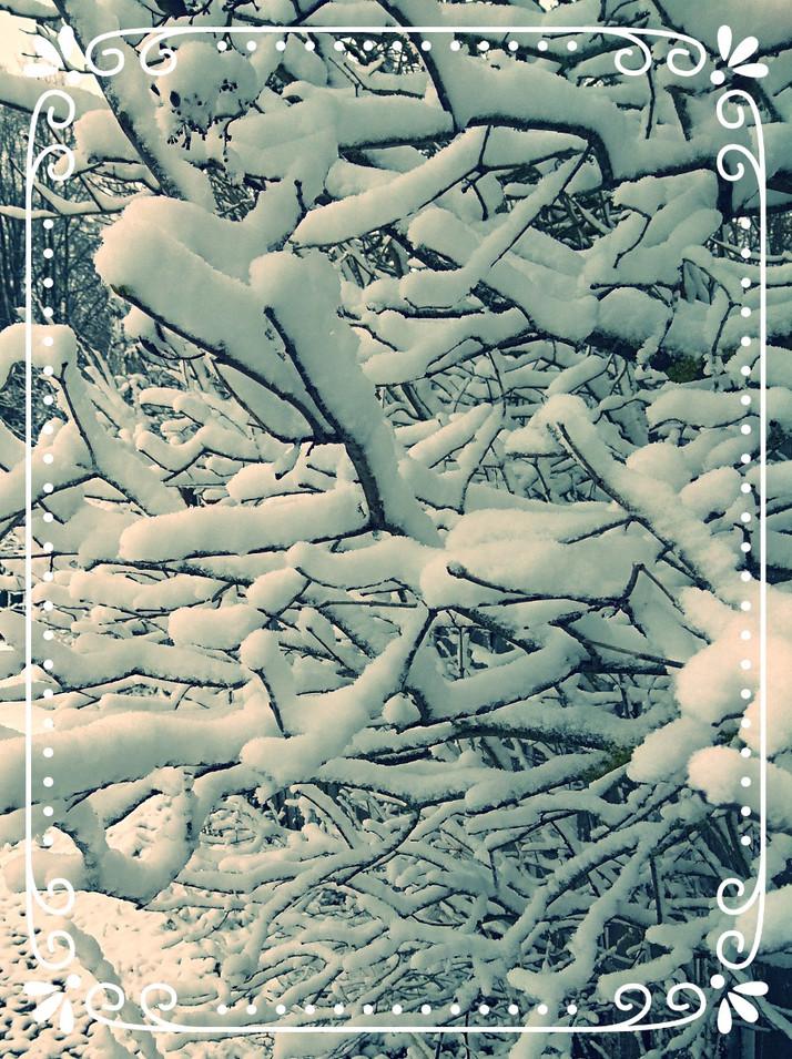 Русская Зима - это самый главный оберег нашей Родины!