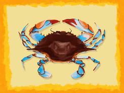 Maine Crab