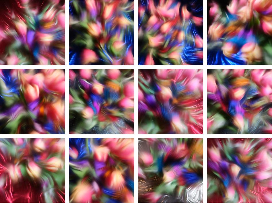 FlowerAgainstData IV.jpg