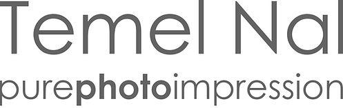 temel logo new.jpg