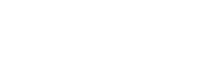 logo_ays_positivo.png