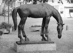 VP55IIa Drinkend paard