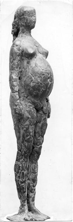 VP30 Zwanger vrouwtje