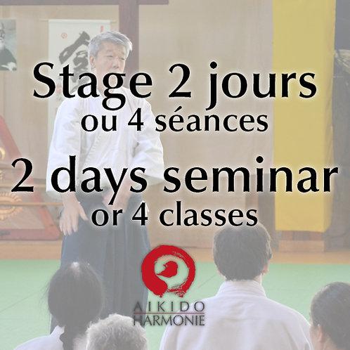 Stage 2 jours ou 4 séances - 2 days seminar or 4 classes