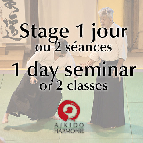Stage 1 jours ou 2 séances - 1 day seminar or 2 classes