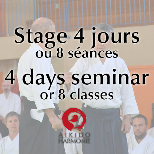 Stage 4 jours ou 8 séances - 4 days seminar or 8 classes