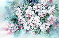 Roses blanches, 14 x 21 $300