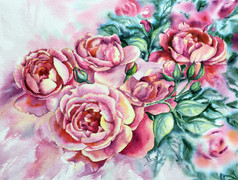 Roses dominicaines, 12 x 16 $200