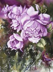 Rose ultramarines, 14 x 11 $150