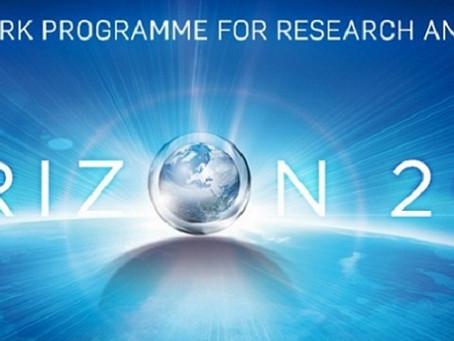 Horizon 2020 SME Innovation Associate