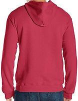 back red hoodie.jpg