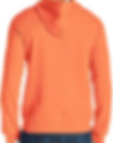 back orange hoodie.jpg