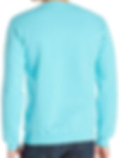 back light blue crew.jpg