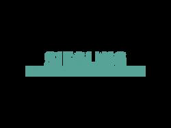 Siegling Belting Logo