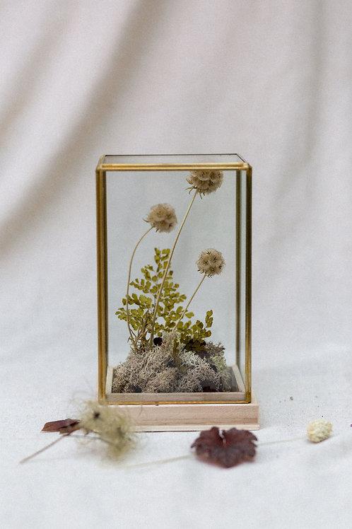 Cúpula dorada
