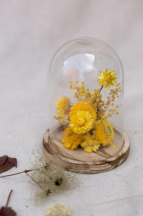 Cúpula floral pequeña