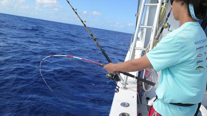 Magic Eye 753 Rod in Bermuda