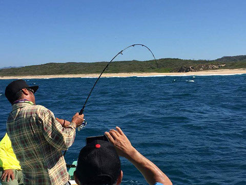 S-662H2MF Cape Cod Special Rod