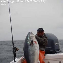 731H Challenger Bank