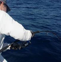 150g 56S Cape Cod Special Jigging Rod