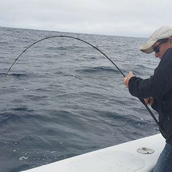 B-632H2MF Cape Cod Special Rod
