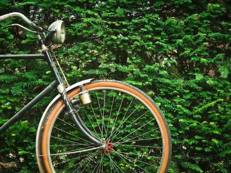 Wolseley to Downtown Walk Bike Project