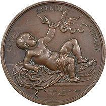 médaille_naissance_duc_de_Bordeaux.jpg