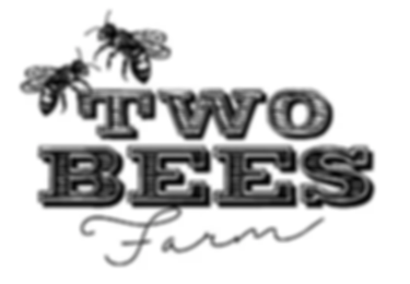 two-bees-web.webp