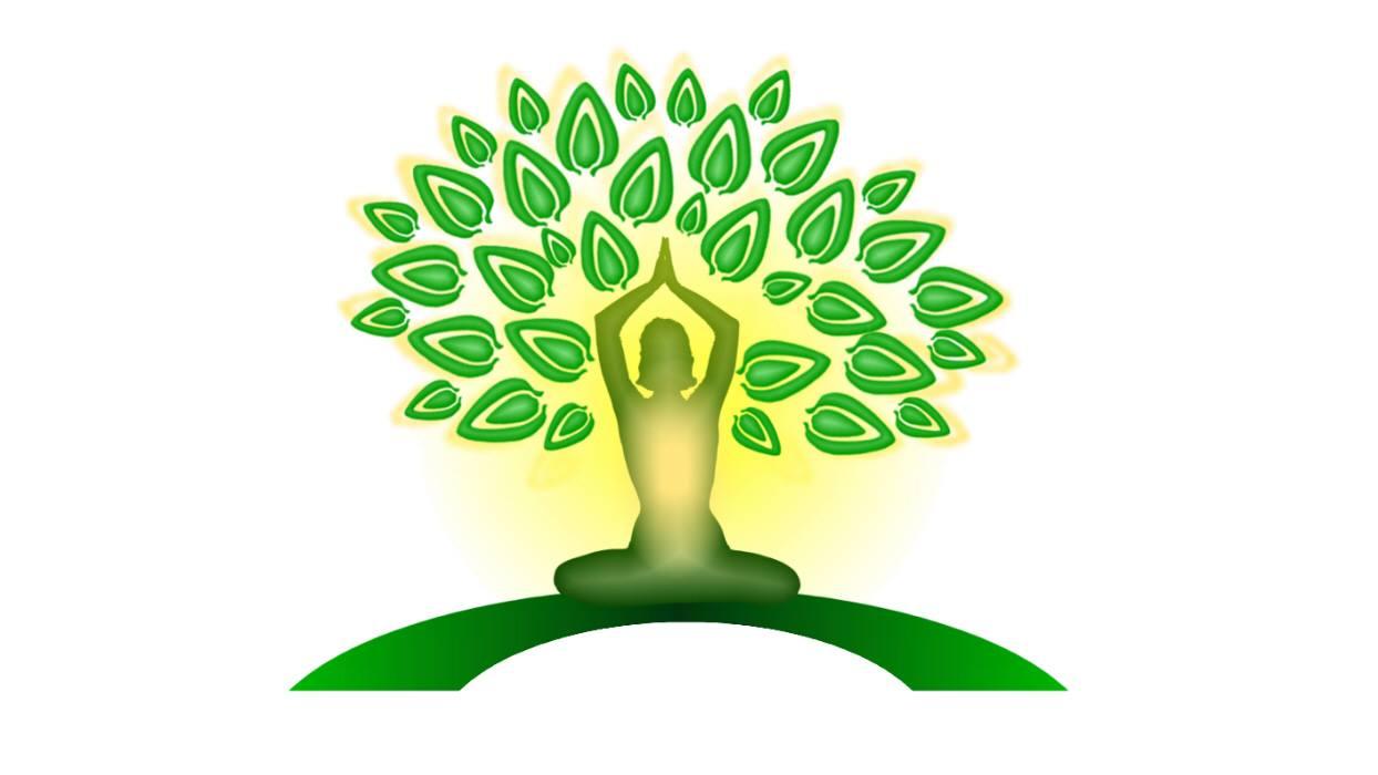Yoga & Wellness NC with Jade