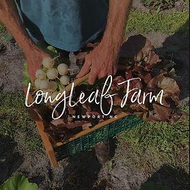 LongLeaf Farm.jpg