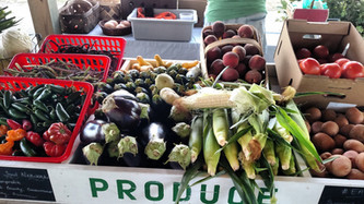 Veggie Van @ MHC Curb Market