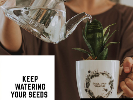 Water Your Seeds