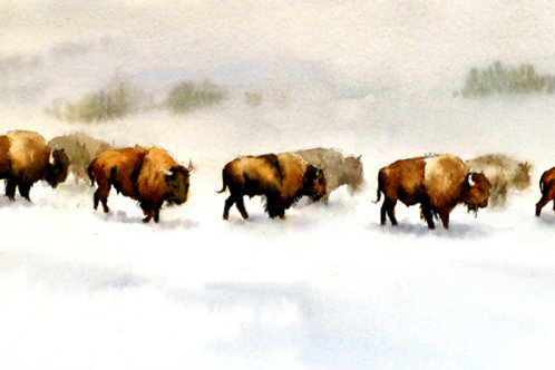 "Buffalo Trail 3""x 9"""