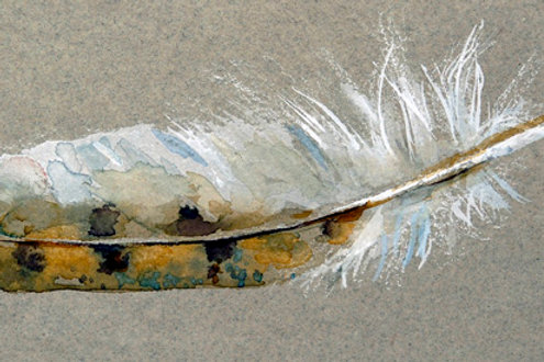 "Owl Feather   6"" x 4"""