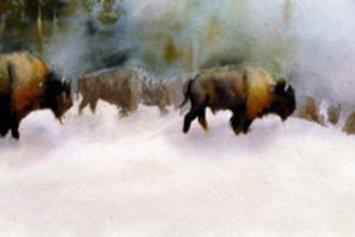 "Geyser Buffalo  4"" x 12"" ( part image)"
