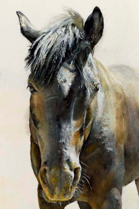 "Pleasant Valley Horse  6"" x 9"""