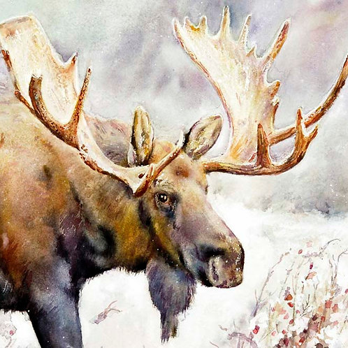 "Winter Rosehip Moose  5"" x 5"""