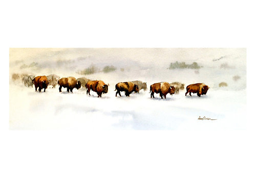 "Buffalo trail  33"" x 9"""