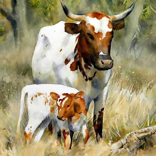 "Longhorns in the Joshua trees.  7"" x 9"""
