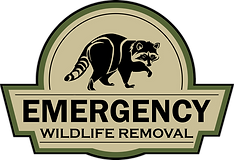Emergency%20Logo%20V2_edited.png
