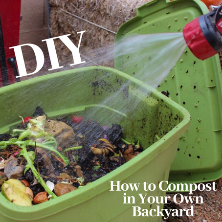 Composting is Simple, Learn the Basics